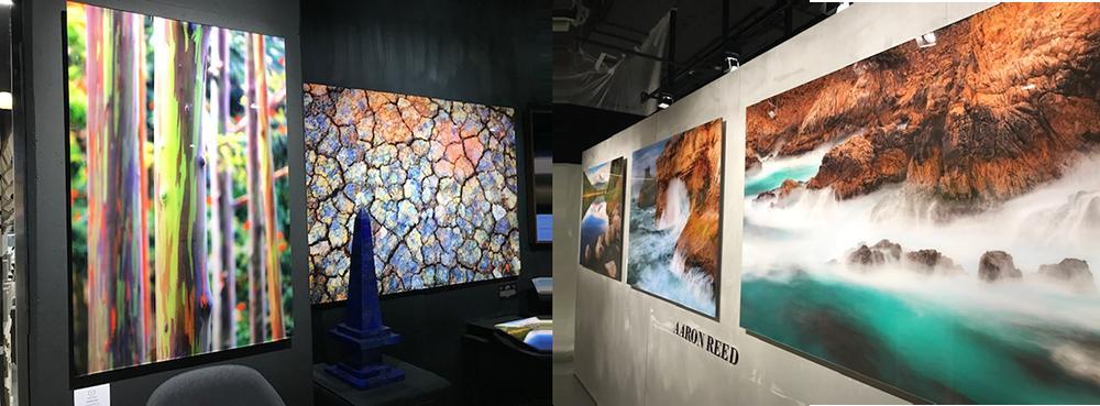 Выставка в Центре модных интерьеров и архитектуры The Dom